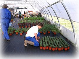 Les Formations Horticulture au Lycée Technologique Professionnel Agricole La Cadène (31) : Bac Pro, BEPA BTSA, BPA - Apprentis d'Auteuil
