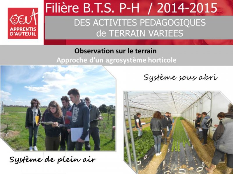 bilan-filiere-bts-production-horticole-2014-2015-10