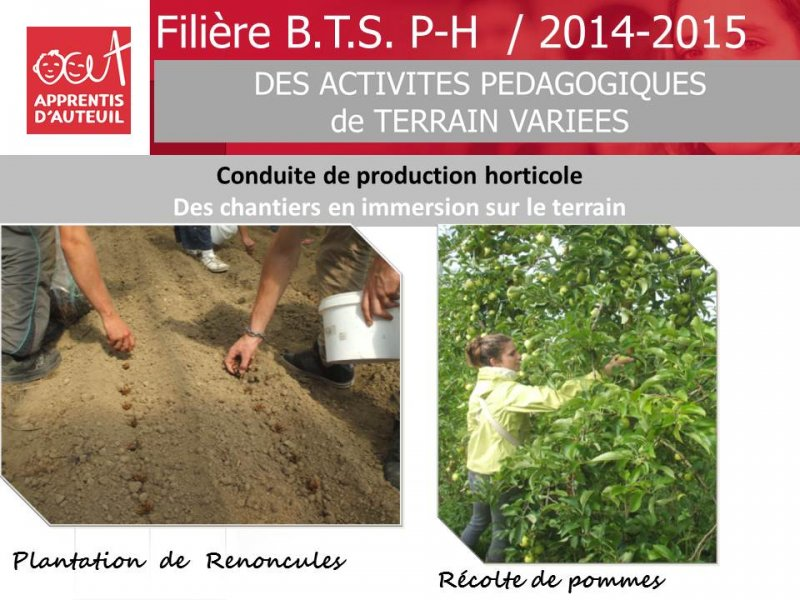 bilan-filiere-bts-production-horticole-2014-2015-2