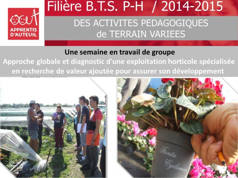 bilan-filiere-bts-production-horticole-2014-2015-4