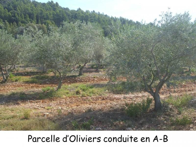 lieux-de-productions-lycee-la-cadene-2