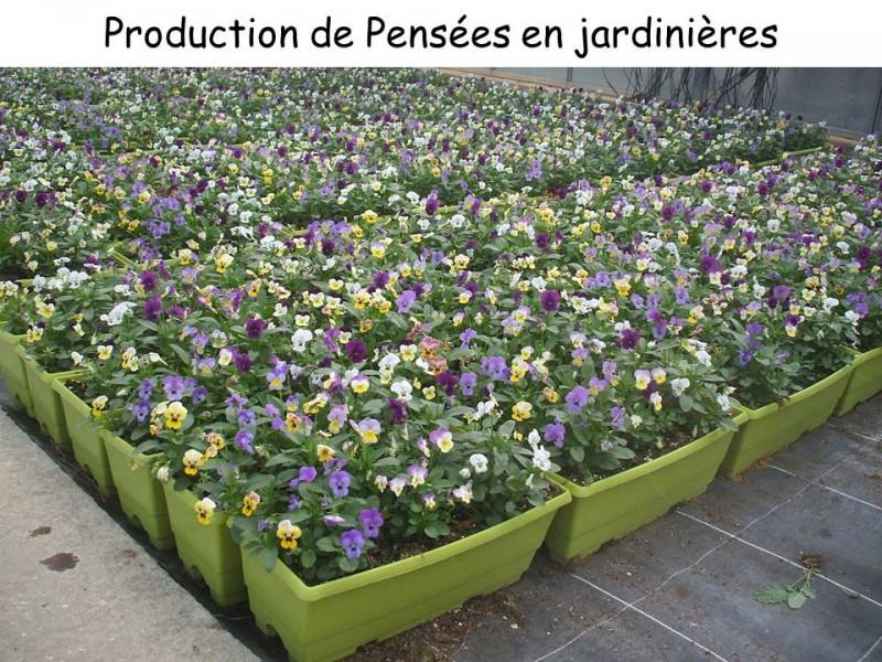 lieux-de-productions-lycee-la-cadene-24