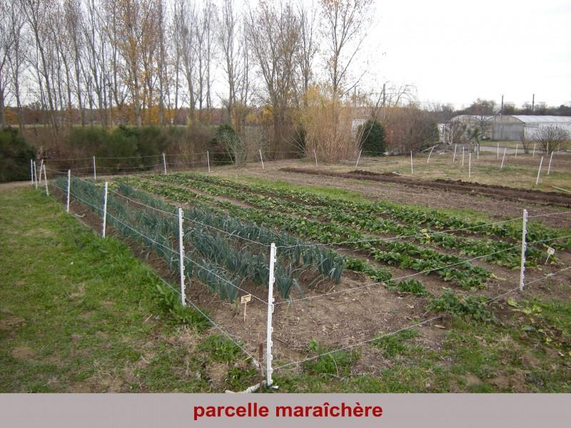 parcelle-maraichere