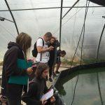 Les élèves de la classe de bac technologique STAV 2 se sont rendus sur le site de l'entreprise La Spiruline du Midi, à Couffouleux dans le Tarn.