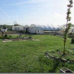 Avec une surface globale de 2800 m² la vente à la serre du Lycée Technologique Professionnel Agricole Saint-François (31) est ouverte aux particuliers.
