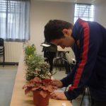 Le 23 février a eu lieu au lycée technologique Saint-François (31) le concours de reconnaissance des végétaux 2017. Apprentis d'Auteuil