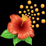 pollen_flower_256