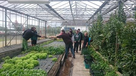 voyage Irlande 1er bac pro productions horticoles lycee st françois (8)