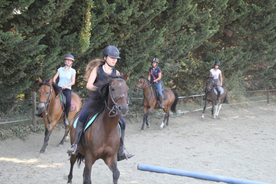 option hippologie, equitation (3)
