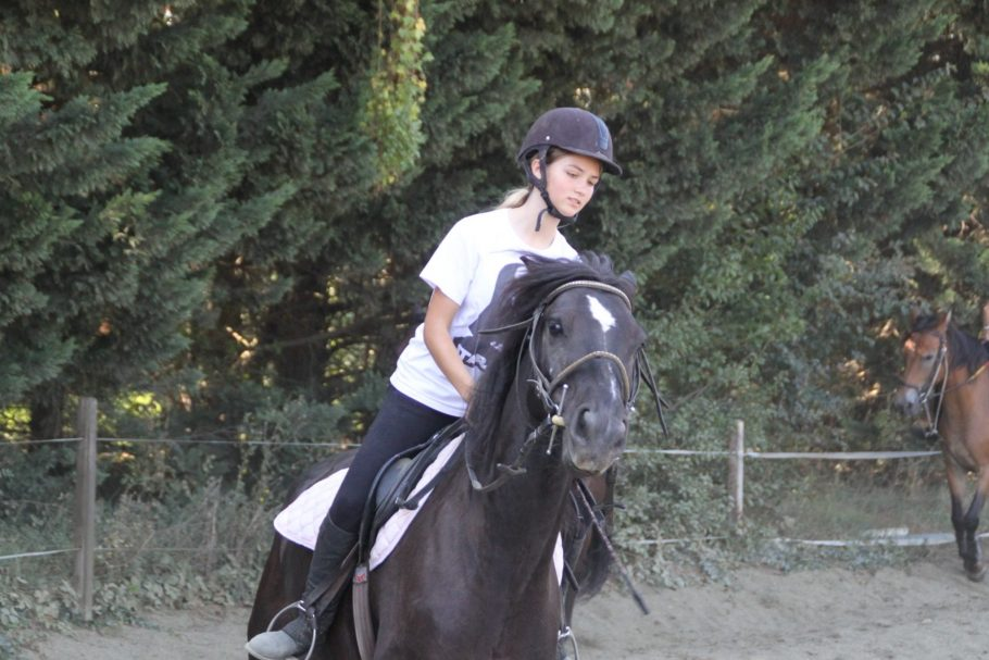 option hippologie, equitation (4)