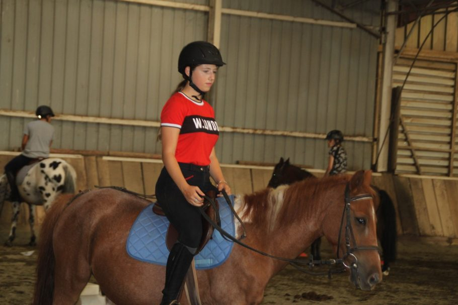 option hippologie, equitation (7)