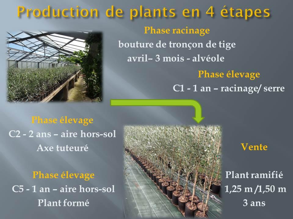 voyage d'étude bts production horticole-hyere (1)