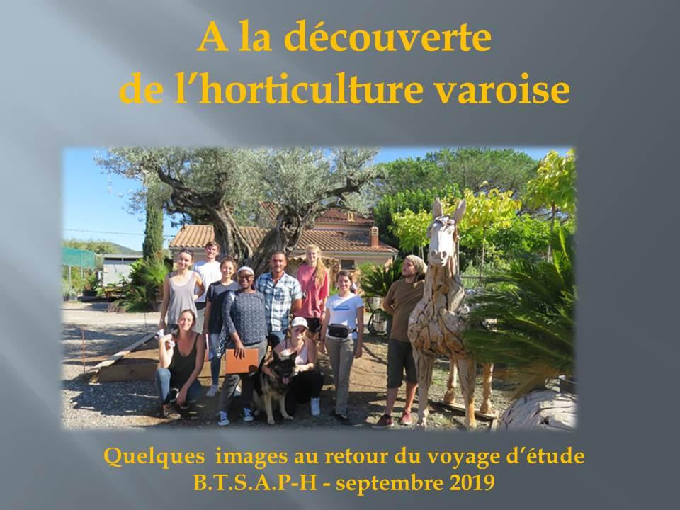 voyage d'étude bts production horticole-hyere (11)