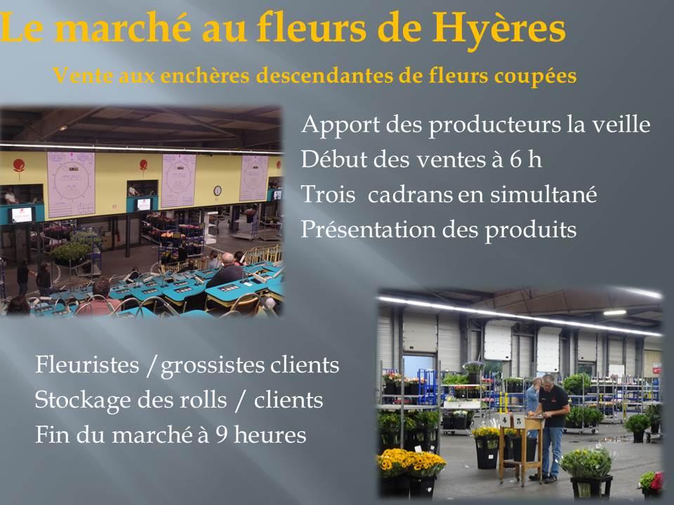 voyage d'étude bts production horticole-hyere (6)