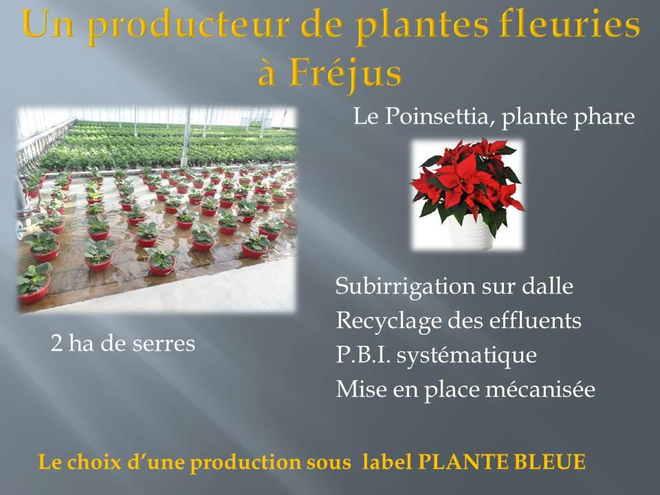 voyage d'étude bts production horticole-hyere (7)