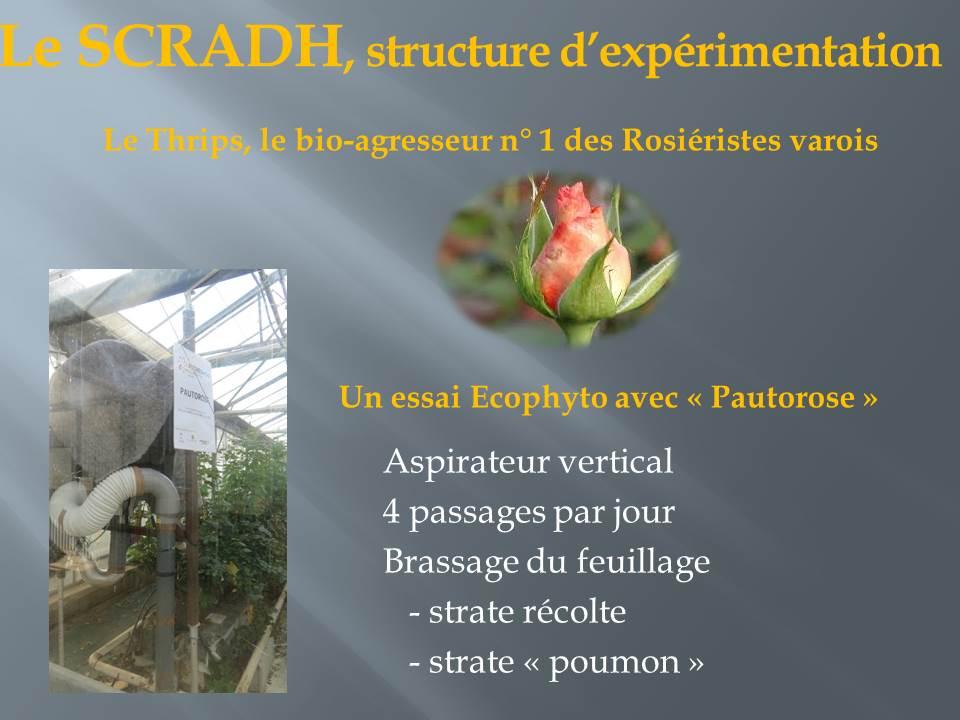 voyage d'étude bts production horticole-hyere (9)